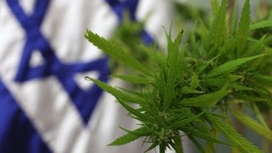 Photo of Tourists Can Now Buy Weed in Israel Pretty Easily