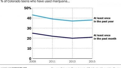 "Photo of צעירי קולורדו מעשנים פחות קנאביס מהממוצע בארה""ב כולה – מחקר"