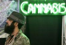 """Photo of """"הטיימס"""" קורא לאי הפללת צרכני הסמים: """"צעד הגיוני בדרך ללגליזציה"""""""