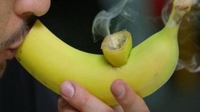"Smoking pipe made of banana: ""An energy bomb: this is how to make a smoking pipe from a banana"" ("