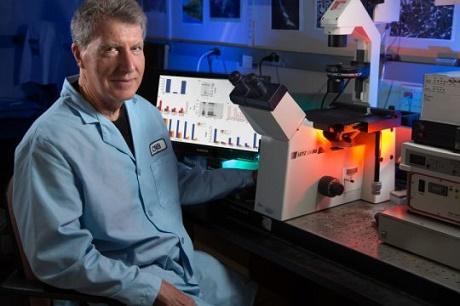 פרופסור דיוויד שוברט - ראש צוות המחקר ומנהל בכיר במרכז המחקר הביולוגי Salk