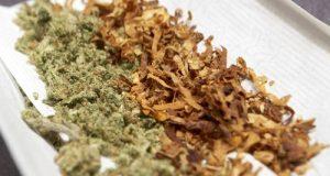 קנאביס מעורבב עם טבק
