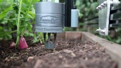 Photo of פארמבוט: רובוט-גנן אוטומטי שמגדל צמחים בשבילכם