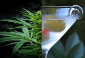 מחקר חדש: 13% פחות מכירות אלכוהול במדינות קנאביס רפואי