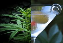 Photo of מחקר חדש: 13% פחות מכירות אלכוהול במדינות קנאביס רפואי