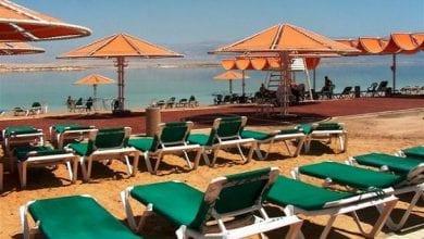 Photo of שתילי קנאביס נמצאו במלון בים המלח