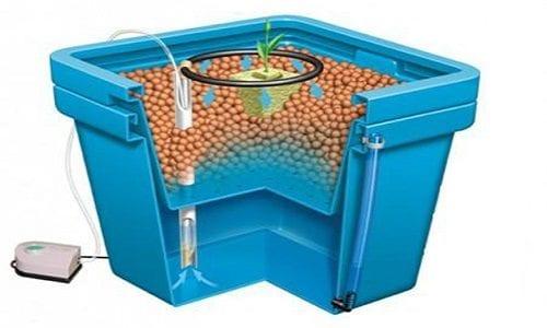 מערכת הידרופונית Aquafarm