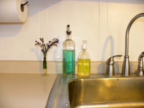 Dish soap and cooking oil - kitchen shields and growing room