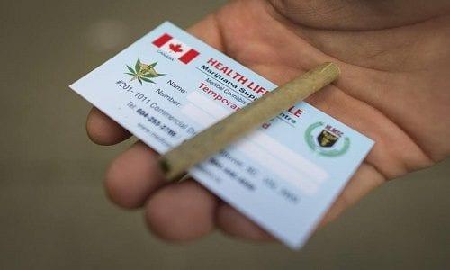 רישיון קנאביס רפואי, קנדה. (קנאביס רפואי, טורונטו, קנדה. (בדרך ללגליזציה: בקנדה התירו את כל חוקי הקנאביס הרפואי))