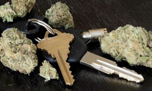 מפתחות רכב (אוטו) ליד פרחי קנאביס רפואי