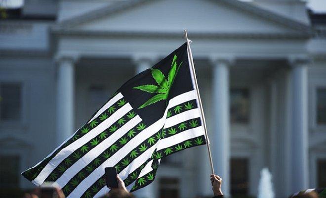 """דגל קנאביס ארה""""ב הבית הלבן"""