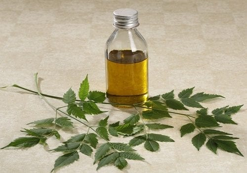 Neem oil - effective organic pest control against all types of insects