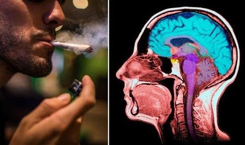 ערבוב קנאביס וטבק גורם להשפעה על הזיכרון - שעדיין אינה מובנת במלואה