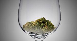 כוס יין עם פרחי קנאביס