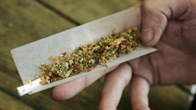 Photo of 7 סיבות טובות לא לערבב טבק בג'וינט שלכם