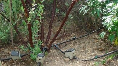 Photo of חתיכת צינור: מושגים בסיסיים בעולם ההשקיה