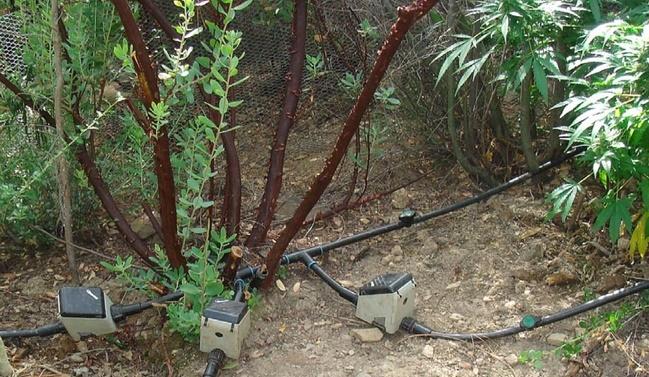 חתיכת צינור: מושגים בסיסיים בעולם ההשקיה