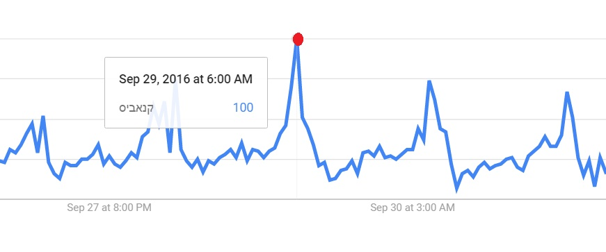 חיפושי קנאביס בגוגל שיא בוקר