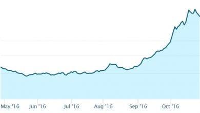 """Photo of מניות הקנאביס מזנקות לקראת הבחירות בארה""""ב"""