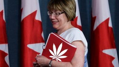 Photo of קנאביס חוקי מגיל 18: קנדה עושה לגליזציה