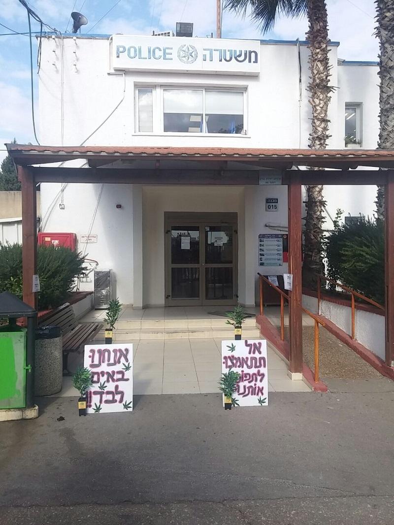 שתילי קנאביס מפלסטיק מחוץ לתחנת המשטרה
