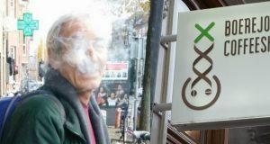 שלומי סנדק באמסטרדם - ביקורת זנים וקופישופס