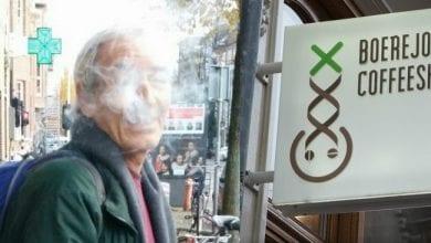 Photo of סולם סנדק: ביקורת קופי שופס וטעימות זנים באמסטרדם