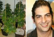 השחקן רמי דוידוף נעצר עם 15 שתילי קנאביס בביתו