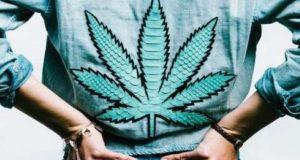 Cannabis Fashion: Cannabis Shirt