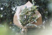 זר מריחואנה: הלהיט של יום האהבה בקליפורניה
