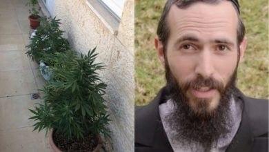 הרב יצחק גבאי נעצר על גידול קנאביס