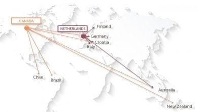 Photo of מפת המסחר הבינלאומי בקנאביס רפואי