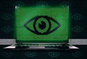 המלחמה ברשת האפלה: גם 'אלפא ביי' ו'האנסה' נסגרו