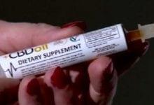 Photo of 42% מהמטופלים ב-CBD מפסיקים את השימוש בתרופות