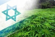 """Photo of רשמית: """"לגליזציה בישראל – תוך כ-9 חודשים"""""""