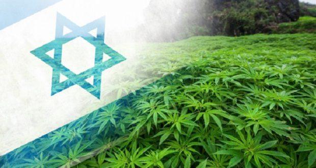 קנאביס ישראל