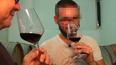 מגמת יין מאיר שפיה