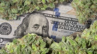 Photo of מיליארד דולר ב-8 חודשים: מכירות הקנאביס בקולורדו בשיא