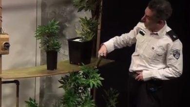 "Photo of אירוע חגיגי של המשטרה: הצגה על ""פרח פלאי בשם קנאביס"""