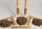 חדש: ניירות גלגול ספוגי THC
