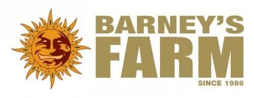 Barneys Logo