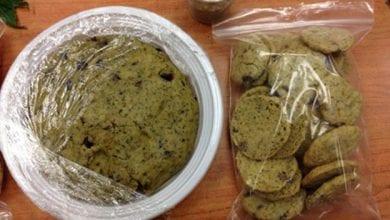 "Photo of תלמידים אכלו עוגיות חשיש בטיול השנתי – פונו לבי""ח"