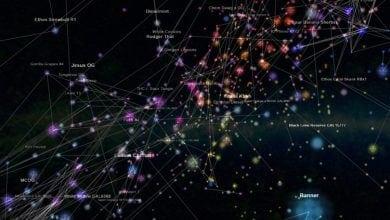 הגלקסיה של פיילוס - זני קנאביס