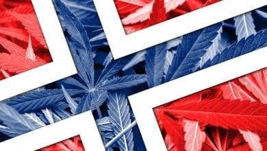 נורווגיה אי הפללה