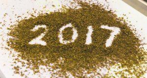 אנשי השנה 2017