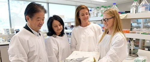 מדענים חוקרים CBD