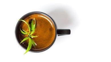 קפה קנאביס