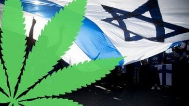 Cannabis Israel History (Photo: Jonathan Zindel, Flash 90)
