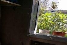 גידול עציץ קנאביס במרפסת