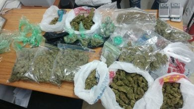 Cannabis is a Telegras trader in Netanya